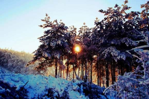 Beautiful Winter Landscape as the Sun Sets