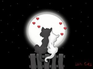 Love Spell for Full Moons Only