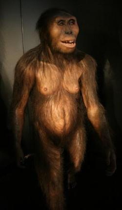 Orang Pendek: Homo Floresiensis?