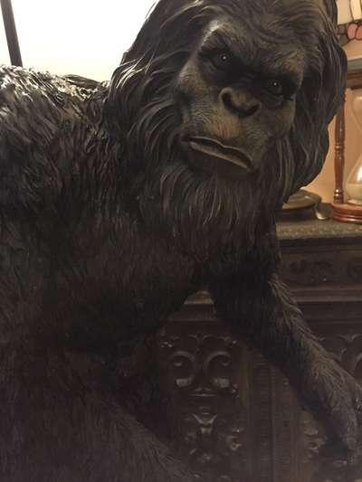 Bigfoot sightings reported in North Carolina