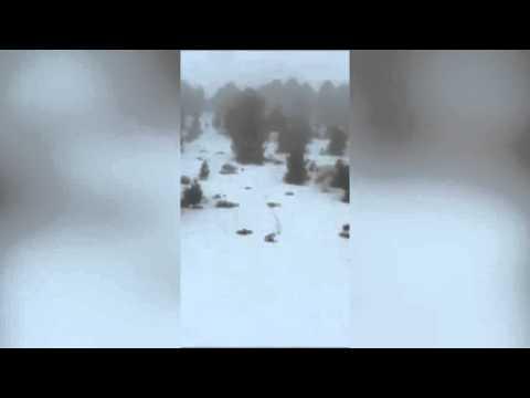 Skiers Panic Over Yeti Sighting on the Slopes