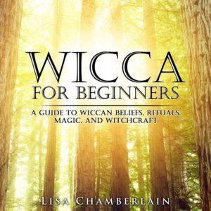 Wiccan Calendar: Yule or Winter Solstice Celebration